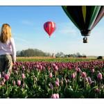 Dreamin' - Hot Air Balloon Rides