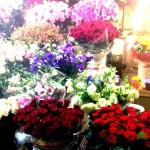 当時のお花